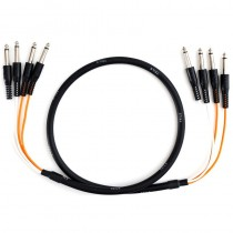 Multicore2020 Cable Jackie